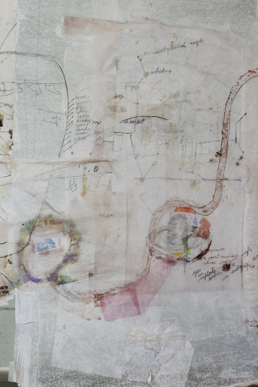 The Walking Project 2015   - Mary Peacock (VIC)The Map 2015 (detail) (2015), Tissue paper, PVA glue, watercolour, graphite, pen and ink, dimensions variable.Courtesy of the artist.