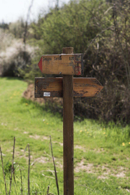 Cascina Cerola si trova in una proprietà di 27 ettari e i suoi 6 sentieri sono tutti correttamente mappati e segnalati per percorrere delle lunghe camminate nella natura