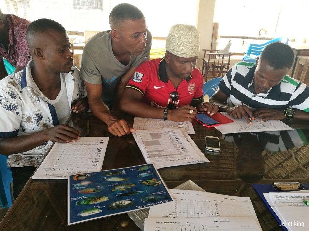 The team analysing coral reef survey data