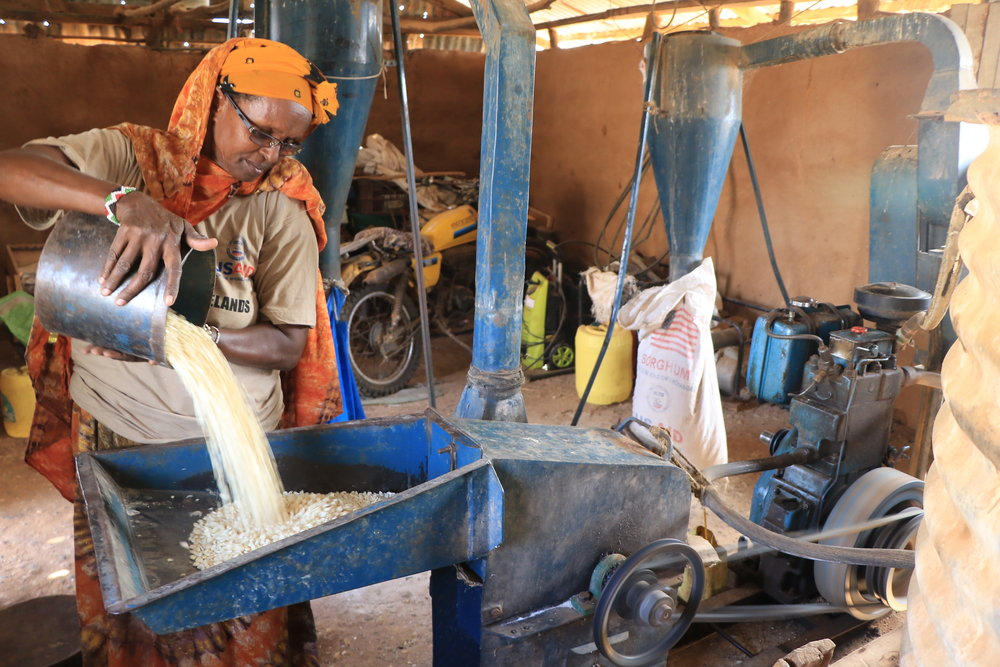 Dade Roba - Business woman, Biliqo-Bulesa ConservancyDade runs a maize mill. Historically she has always relied on local supply, so when the rains fail, so does her business. In July 2018, Dade was one of 102 women in Biliqo-Bulesa to recieve a business loan from her conservancy, find out how she's transforming her business and supporting her family for the future.Read more >