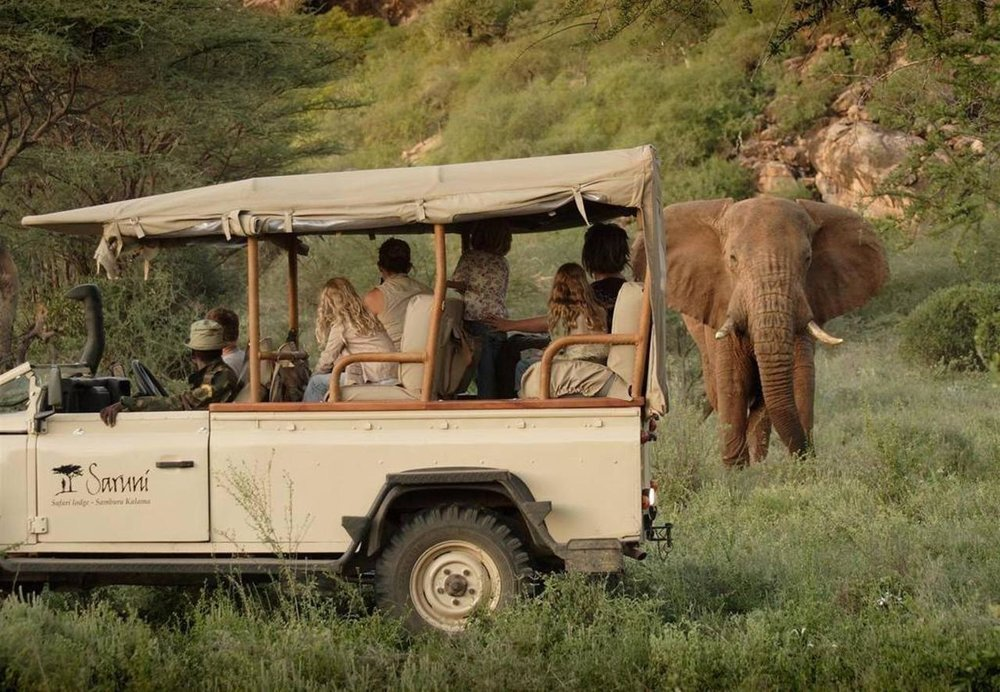 Saruni_safari.jpg