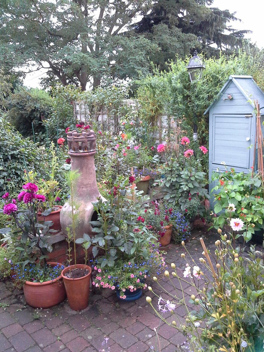 Lynne's garden in full bloom