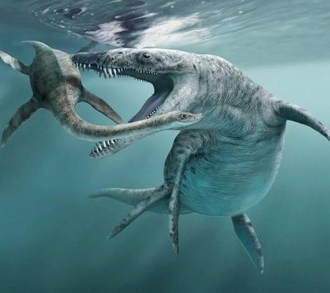 pliosaur3.jpg