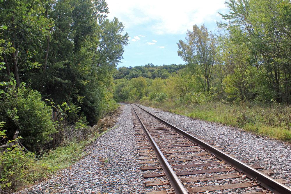 Horsehoe Bend Trail-4.jpg