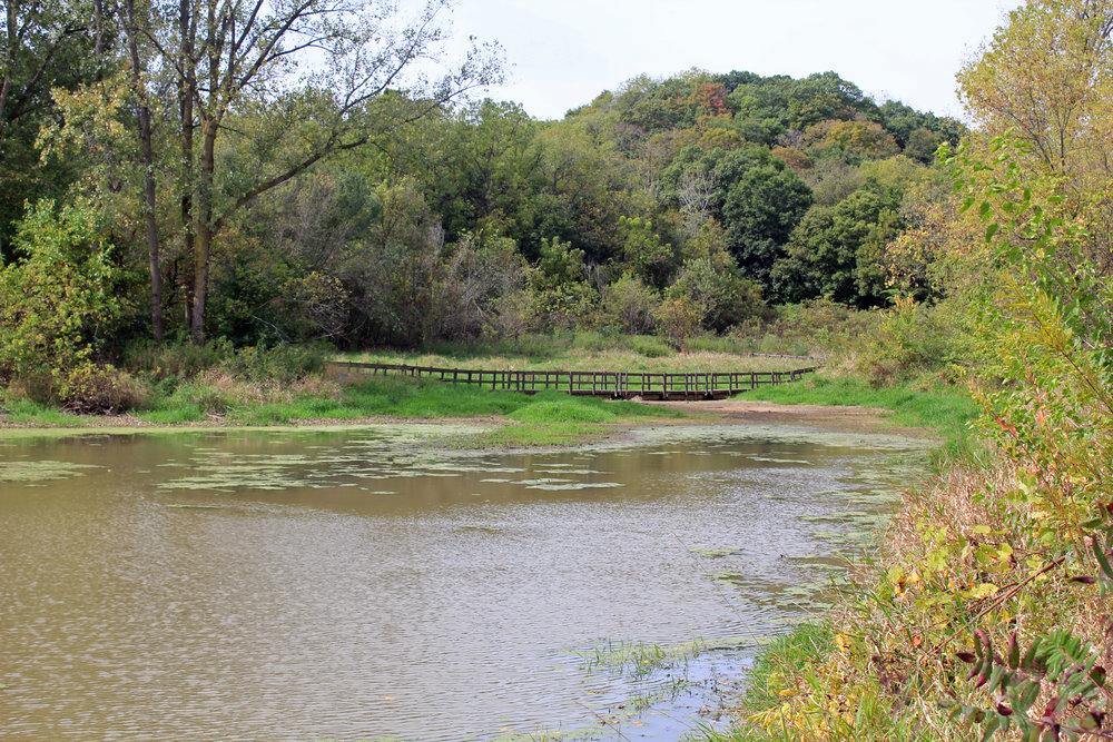 Horsehoe Bend Trail-5.jpg