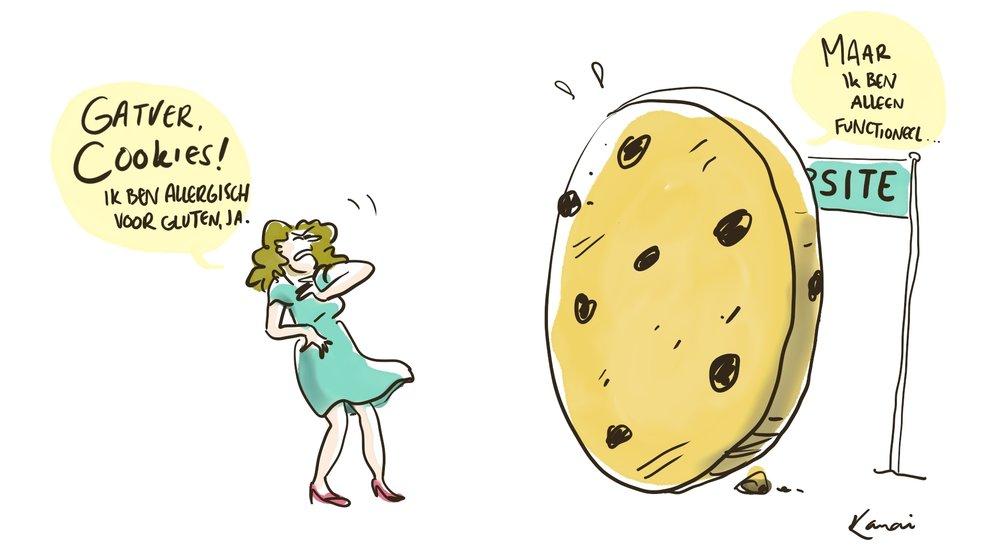 cookie-policy-KANAI.jpg