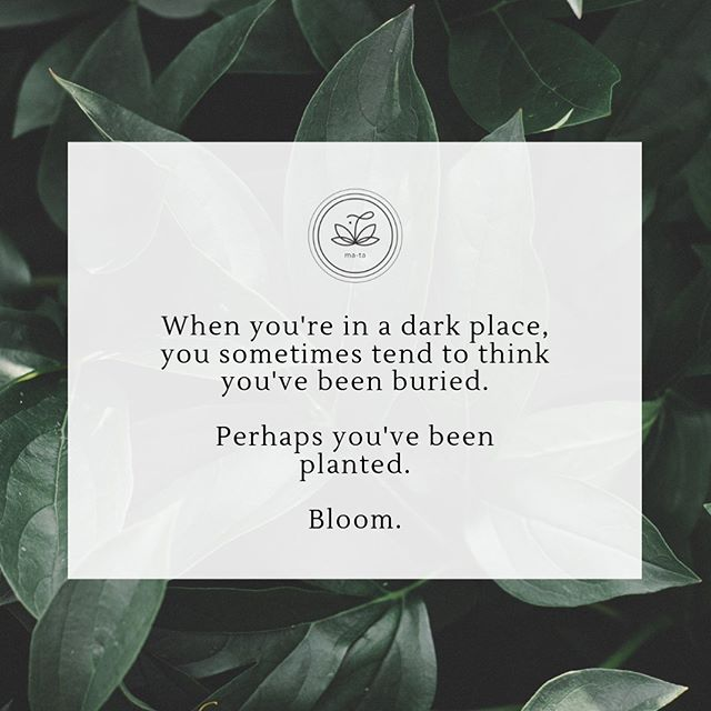 A friendly reminder for the upcoming election:  We can bloom, even during dark times.  Stand up to hope! Vote wisely! Love fiercely!  #Halalan2019