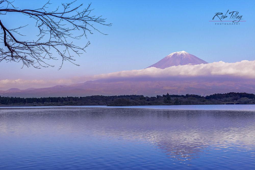 Mt. Fuji & Tanuki Lake I