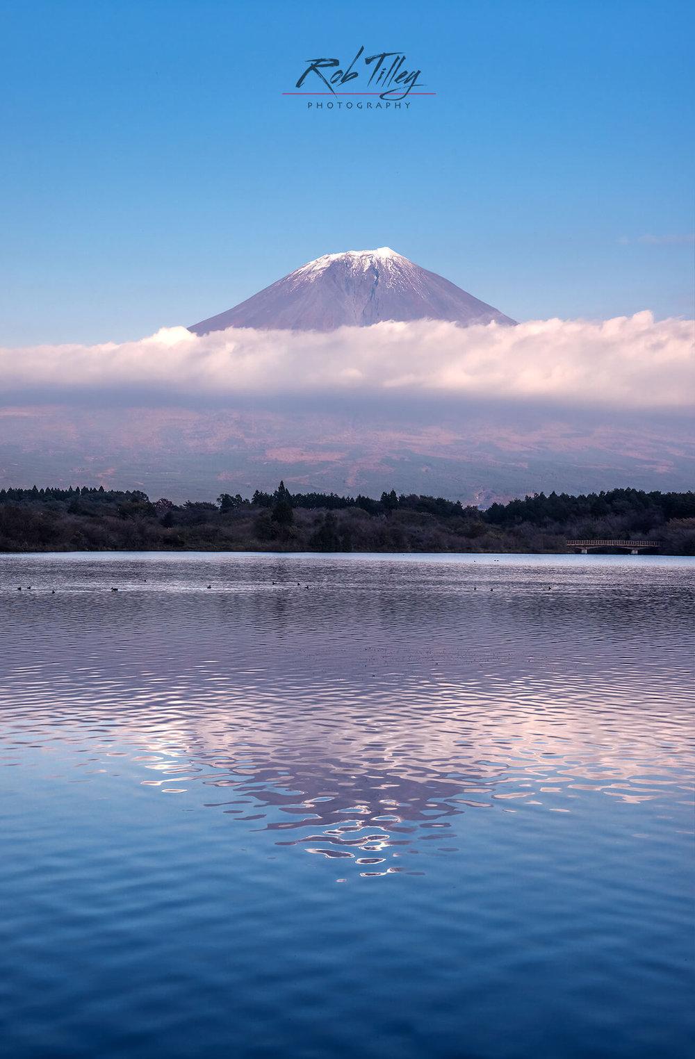 Mt Fuji & Lake Tanuki II.jpg