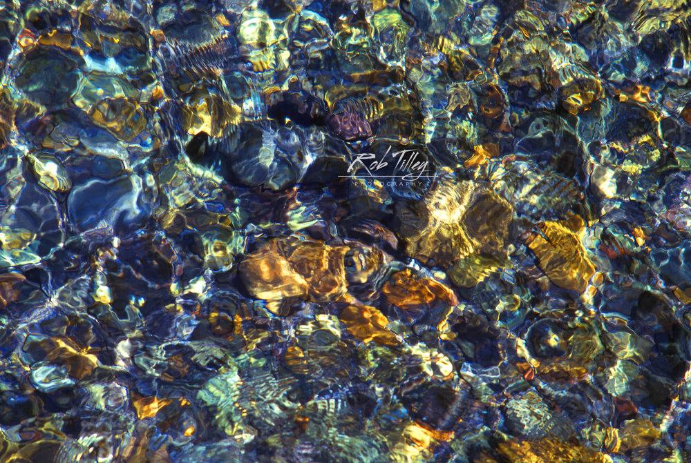 Ohanpecosh River.jpg