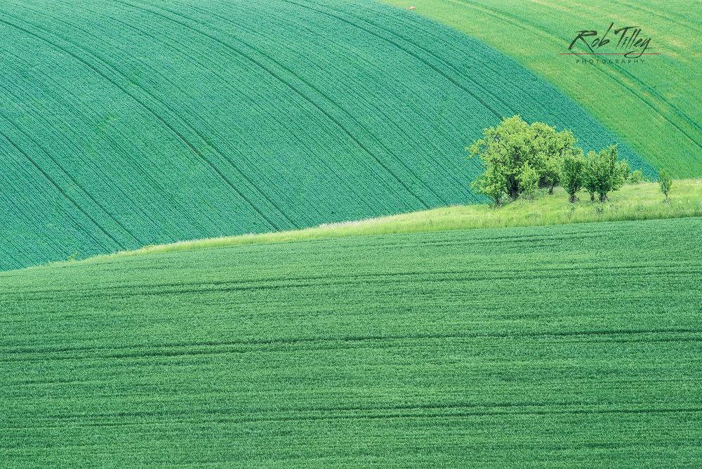 Spring Farm Fields.jpg