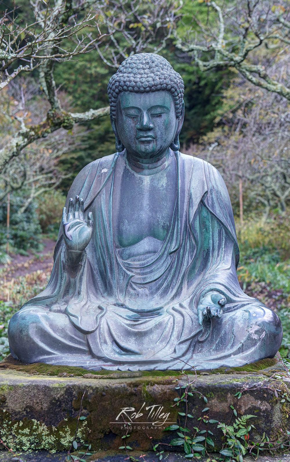 Temple Buddha.jpg