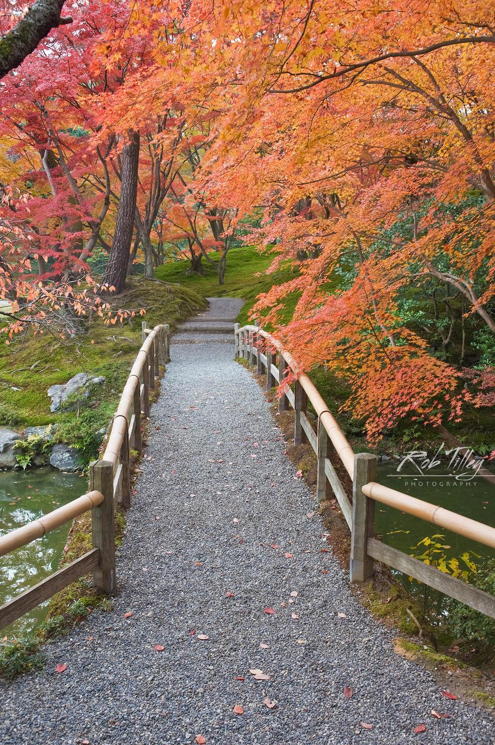 Sento Imperial Palace Garden II