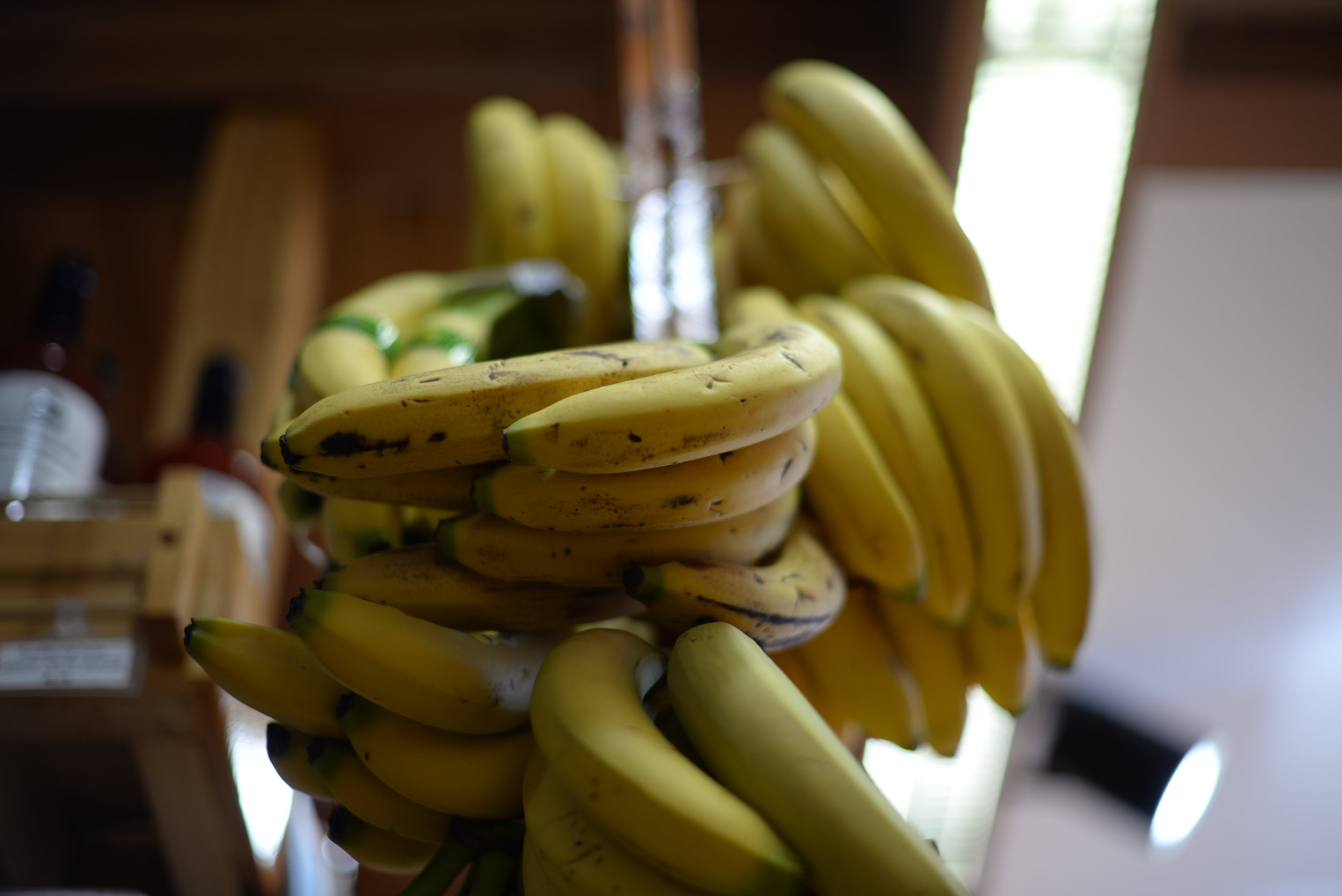 BL Meal Prepping Farmers Market Bananas