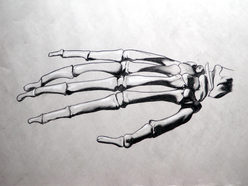Nichole Bones.jpg