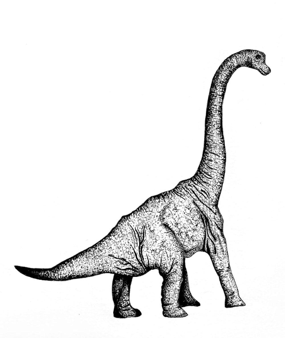 dino diplodocus.jpg