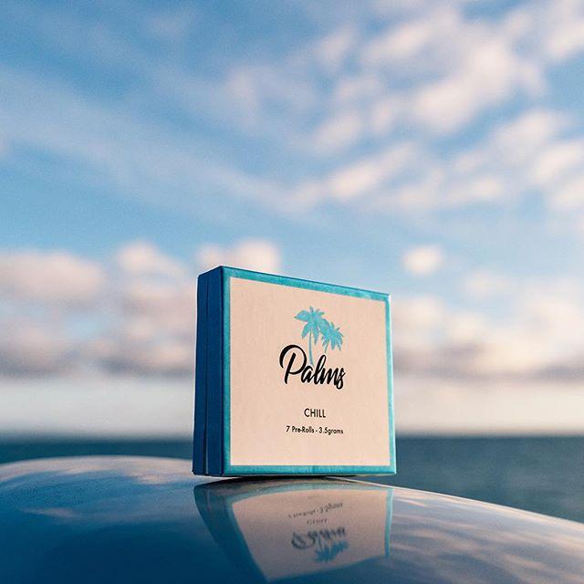 This week is looking good! 💙🌴 #palmspremium #oceanview