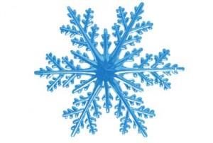 snowflakeday-300x202.jpg