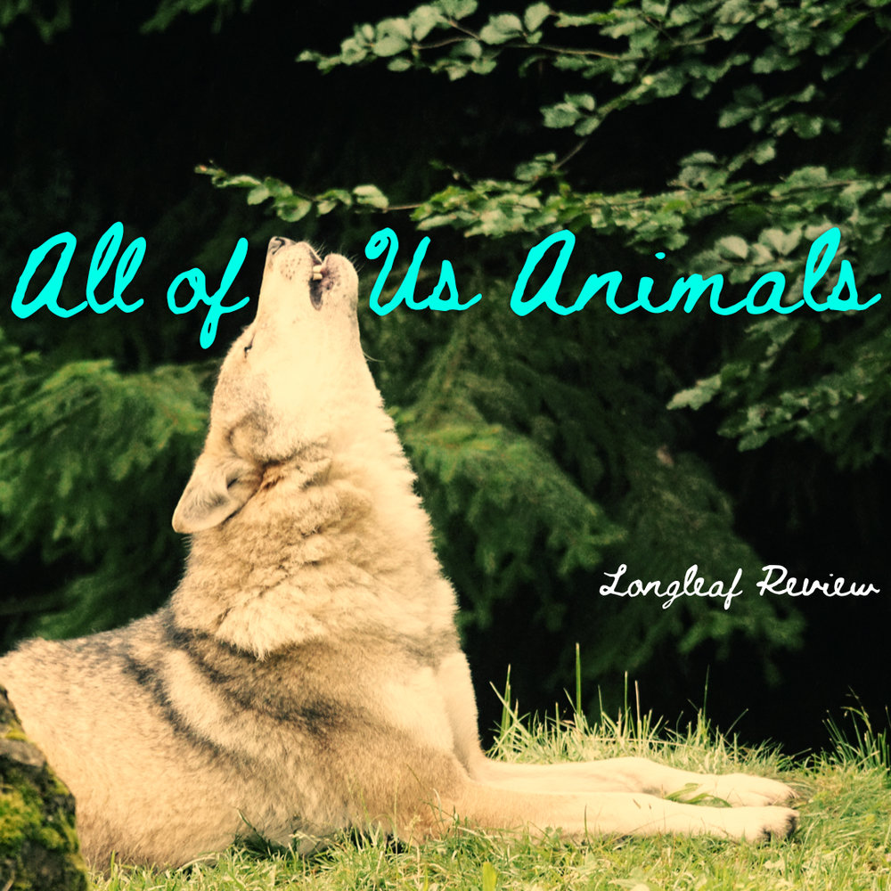 """All of Us Animals"""