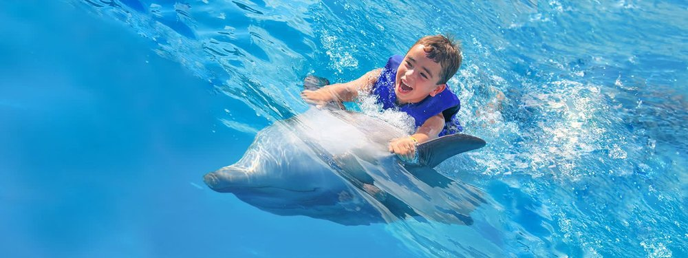dolphin-kids-cabo-adventures-11_0.jpg