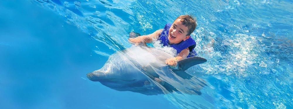 dolphin-kids-cabo-adventures-11_0.jpg