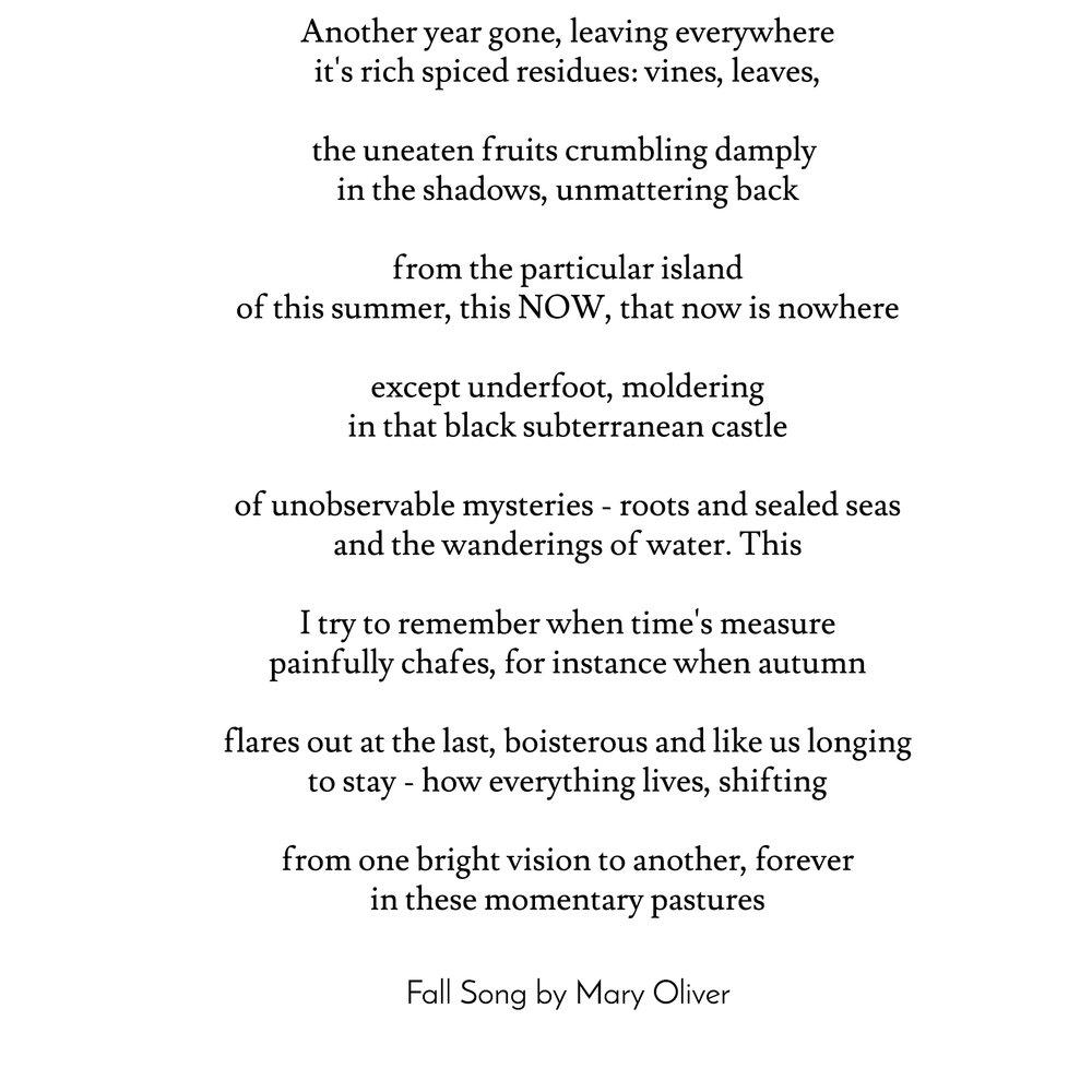 mary oliver poem.jpg