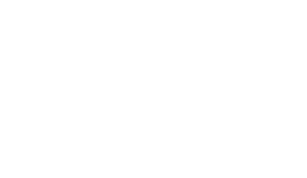 White-CNN Int.png