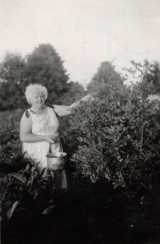 grandma on the farm.jpg