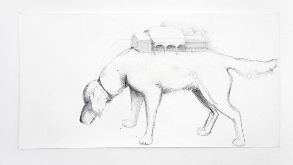 Chien-atelier - 2005