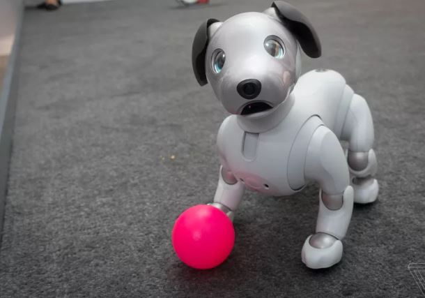 sony's aibo robot dog