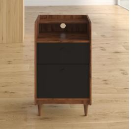 ivy bronx vertical cabinet