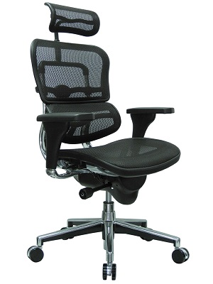 ergohuman high back chair