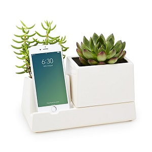 smartphone valet/planter