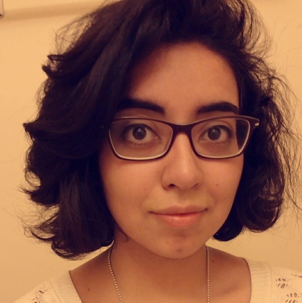 Michelle Pineda - Lead Illustrator, Level Designer and Controller Designer