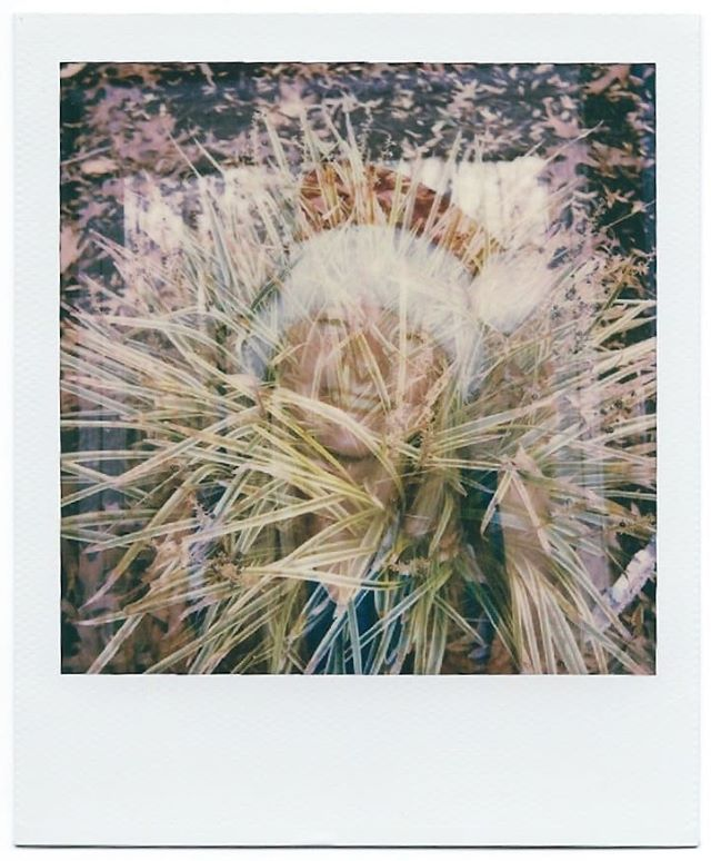 Merry Christmas to all who celebrate it ☃️🎄... Check out my first decent double exposure from my brand-new OneStep+. ☺️ . . #instantfilm #instantfilmphotography #filmphotography #colorfilmphotography #doubleexposure #polaroid #polaroidoriginals #polaroidphoto