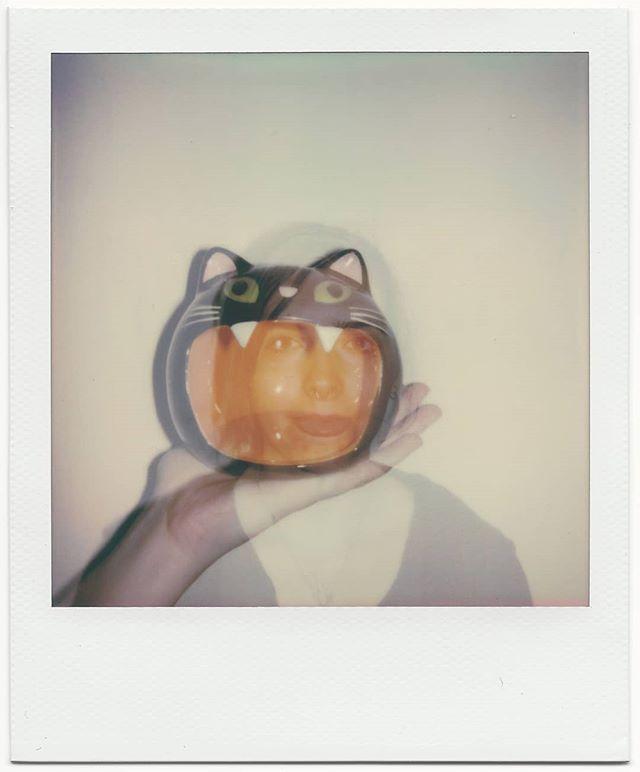 Miaou 🐈 . . #instantfilmphotography #instantfilm #polaroidoriginals #doubleexposure #filmdoubleexposure #cat #portrait #filmportrait #filmisnotdead #polaroid #filmphotography