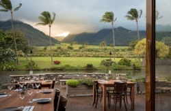 The Mill House at Maui Tropical Plantation     Pamela Shepard-Henderson  , Director of Sales & Events      pamela@millhousemaui.com      808-270-0310