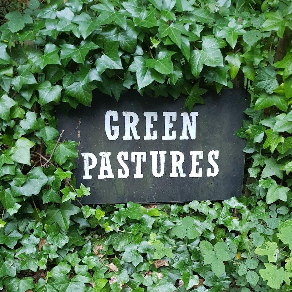 website_Green pastures.jpg