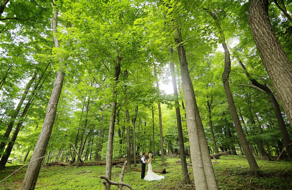 06-Minneapols-Minnesota-Wedding-Photography-by-Vick-Photography-Westwood-Church-Minnetonka-First-Look-Forest-Rustic-Gretchen-&-Peter.jpg