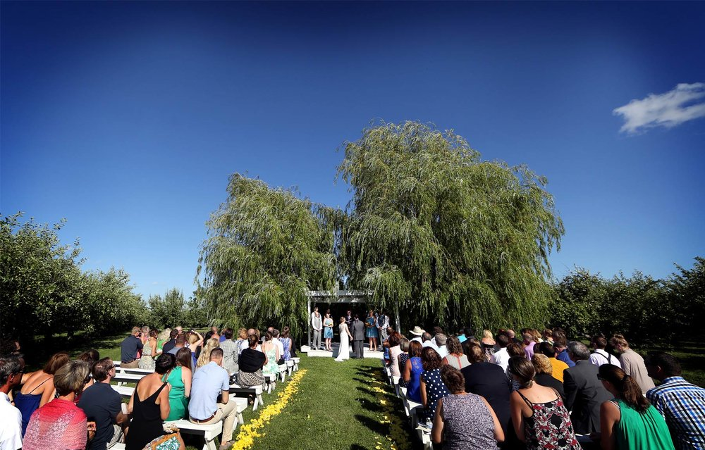 11-Minneapolis-Minnesota-Wedding-Photography-by-Vick-Photography-Minnesota-Harvest-Apple-Orchard-Ceremony-Emilie-&-Giovanni.jpg