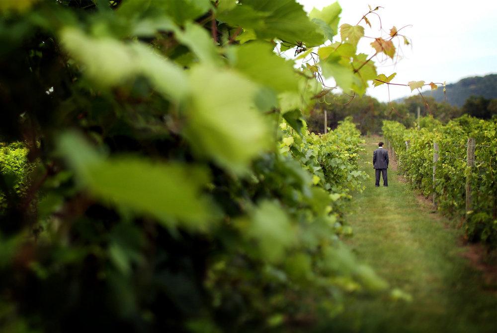 01-Lake-Pepin-Wisconsin-Wedding-Photography-by-Vick-Photography-Villa-Bellezza-Vineyard-Winery-Groom-Emily-&-Sam.jpg