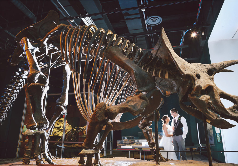 17-St-Paul-Minnesota-Wedding-Photography-by-Vick-Photography-Science-Museum-Dinosaur-Wedding-Dino-Bones-Night-Photography-Stephanie-and-Scott.jpg