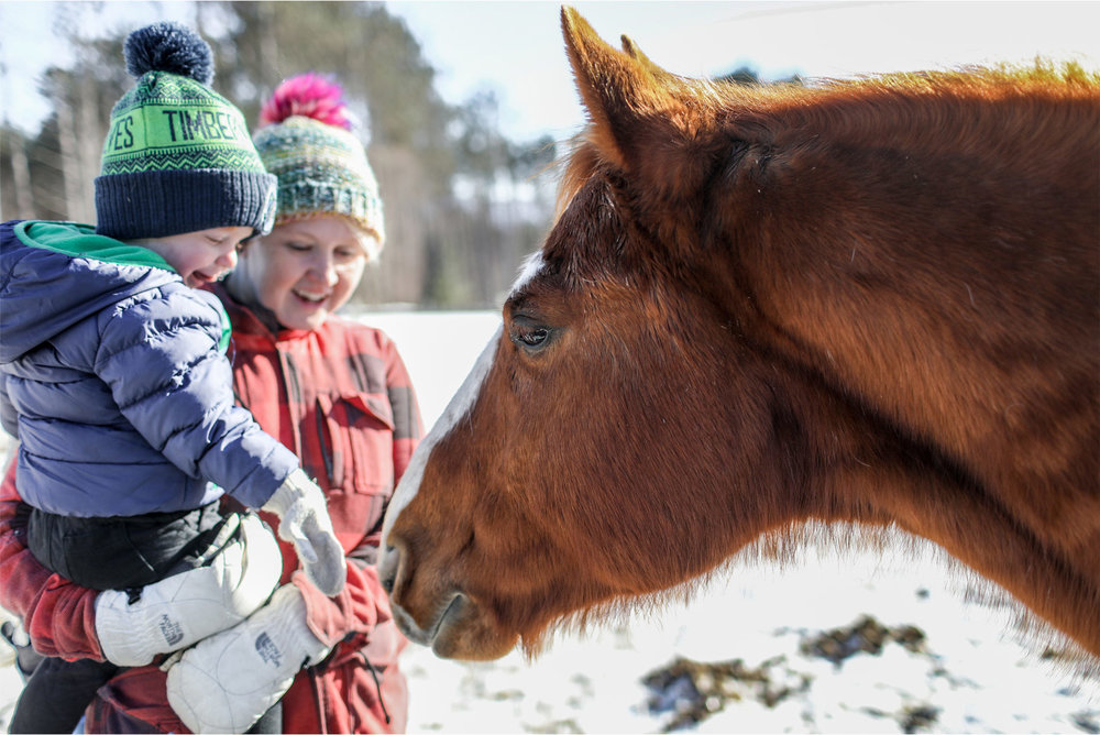 17-Stowe-Vermont-by-Andrew-Vick-Photography-Edson-Hill-Winter-Lodge-Horses.jpg