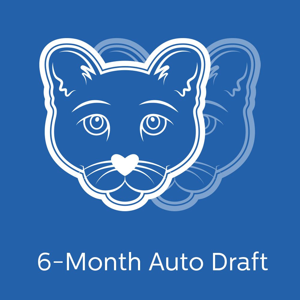 Play Sports Austin | Puma Mascot | Monthly Auto Draft for Siblings