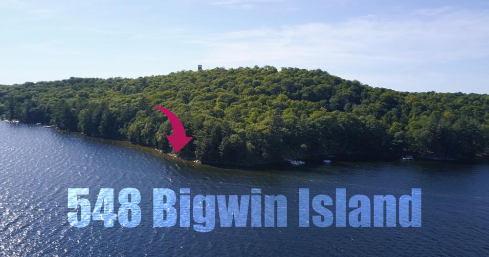BIGWIN1.png