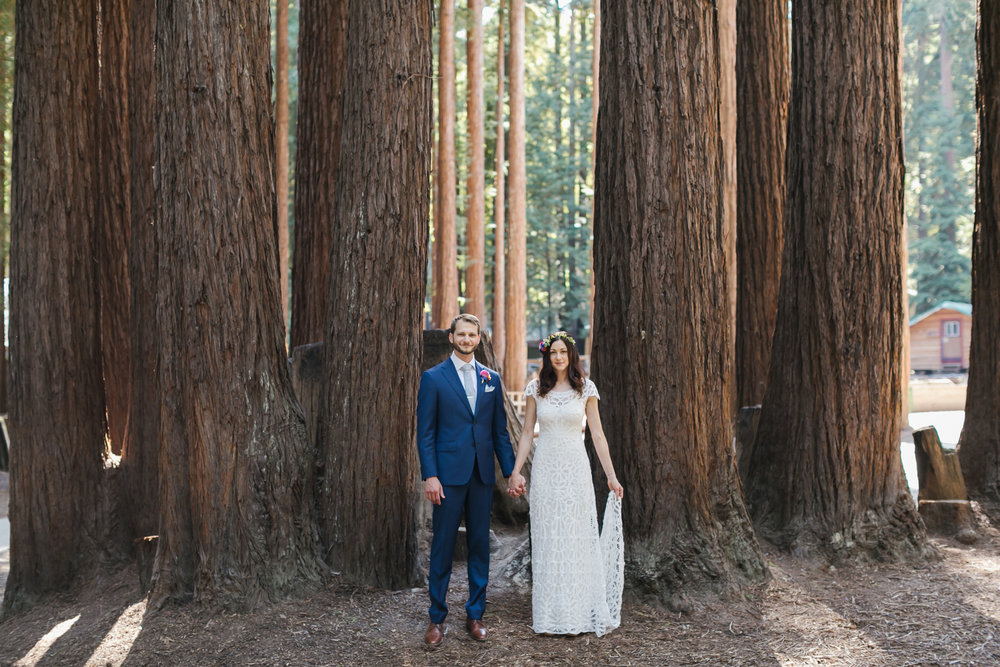 Bride and groom hold hands standing among giant redwood trees