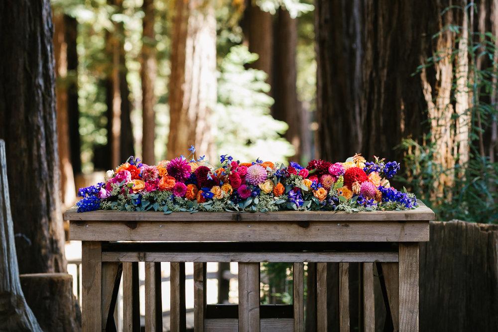 26_Colorful_Camp_Wedding_Santa_Cruz_Campbell_Boulder_Creek.jpg