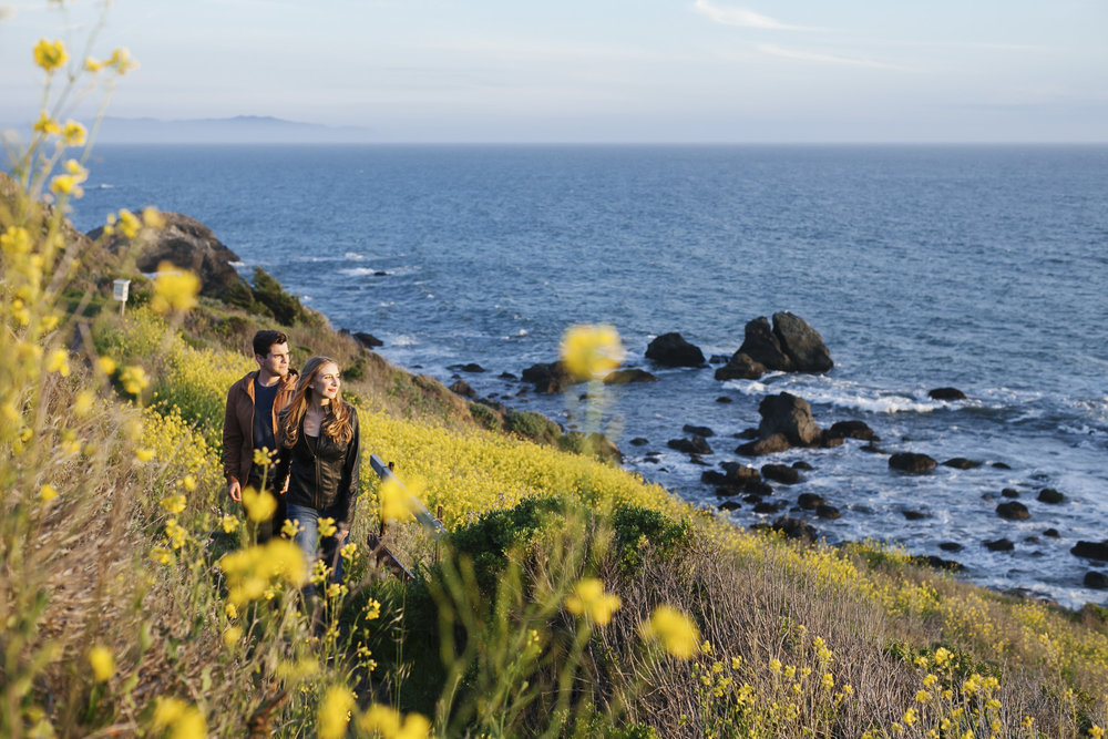 An engaged couple walk along the coast in a field of wildflowers