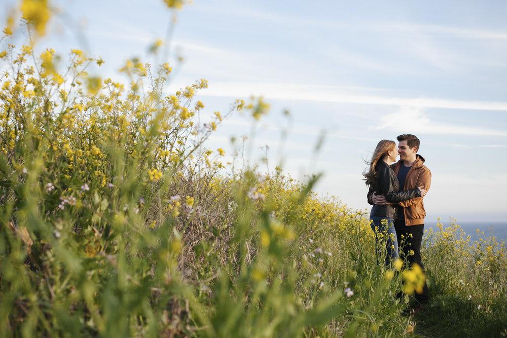 Engaged couple hug among wild yellow mustard flowers
