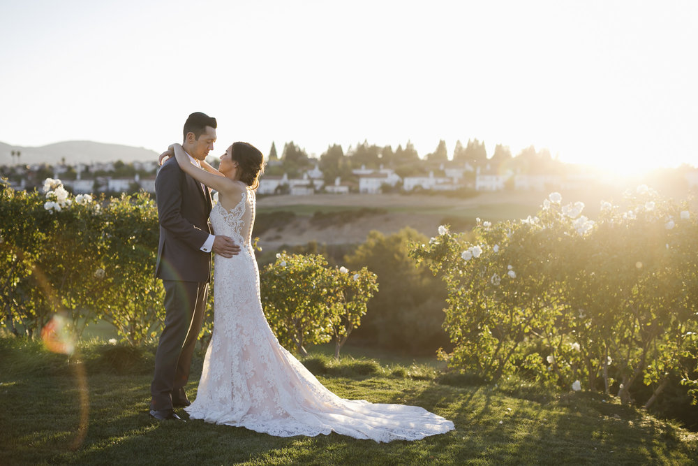 Wedding couple hug at sunset in garden with white roses and a lens flare
